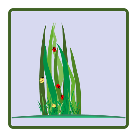 ladybird: Ladybug on green grass in light square card. Cute color sign red insect symbol spring, summer, garden. Template for t shirt, apparel, card, poster etc. Design colorful element. Vector illustration