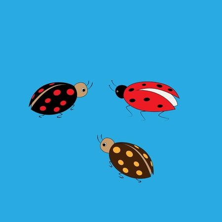 Ladybird color set. Illustration ladybug on blue background. Cute colorful sign insect symbol spring, summer, garden. Template for t shirt, apparel, card. Design element. Vector illustration