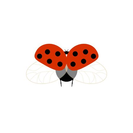 Ladybird isolated. Illustration ladybug fly. Cute colorful sign red insect symbol spring, summer, garden. Template for t shirt, apparel, card, poster, etc. Design element Vector illustration