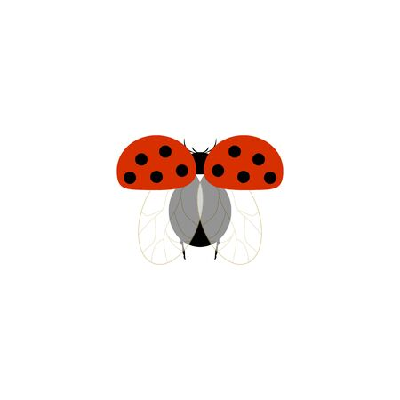 Ladybug isolated. Illustration ladybird fly. Cute colorful sign red insect symbol spring, summer, garden. Template for t shirt, apparel, card, poster, etc. Design element Vector illustration