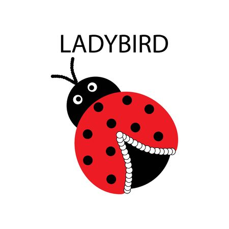Ladybird isolated. Illustration ladybug. Cute colorful sign red insect symbol spring, summer, garden. Template for t shirt, apparel, card, poster, etc. Design element Vector illustration