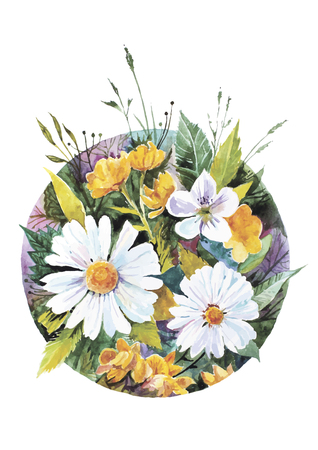 Vector illustration of daisies and other wildflowers made in watercolor technique Illustration