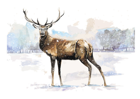 Vector illustration of the dear in winter made in watercolor technique