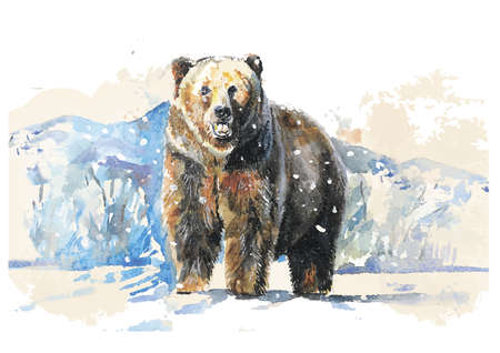 Vector illustration of the bear in winter made in watercolor technique