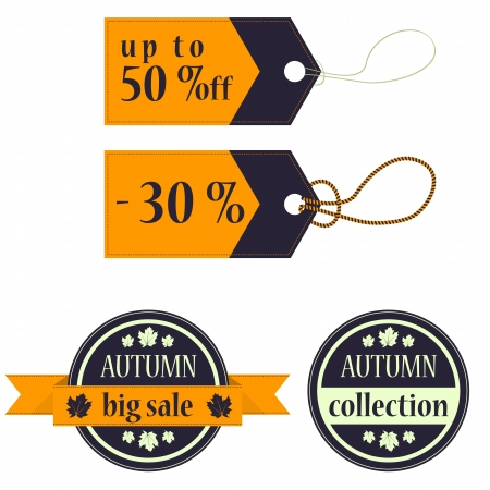 Colored autumn collection text  Vector illustration  Vector