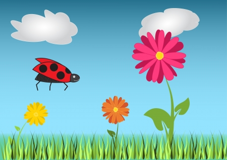 Colored flowers with green grass on the meadow  Vector illustration