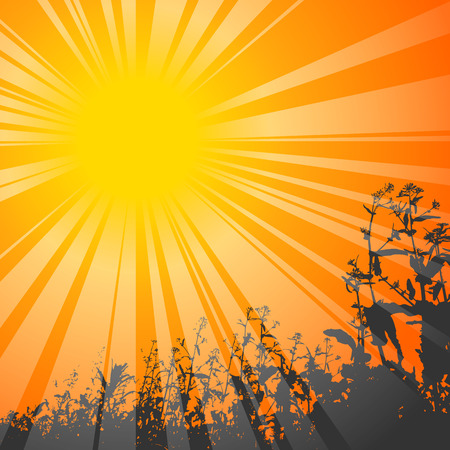 shining sun with flowers on the background Vector