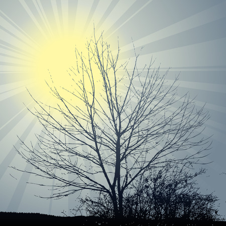 shining winter sun with flowers and tree on the background Vector