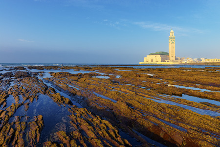 Detail of bare rocks because of low tide at casablanca morocco photo