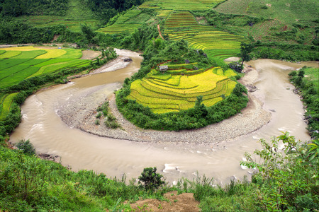 River curve irrigation and Rice fields terraced  in vietnam