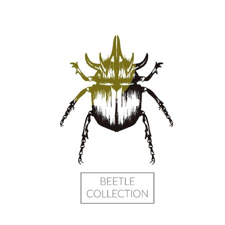 Rhinoceros Beetle Hand Drawn Vector Illustration For Tattoo Design. Engraving Insect Art