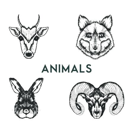 Sketched Drawn Wild Animals Muzzles Vector Set. Hand Drawn Creature Snouts Illusztráció