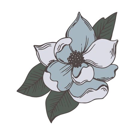 Magnolia with Bowl-shaped Fragrant Flower Isolated on White Background Vector Illustration. Flower Bud with Showy Petals on Stem Floral Hand Drawn Illustration