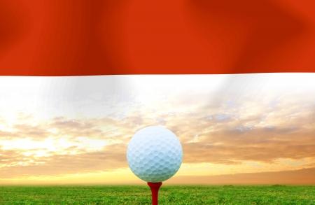 Golf ball Indonesia photo