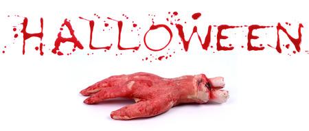 bloody hand print: Print Bloody sobre un fondo blanco con las letras HALLOWEEN