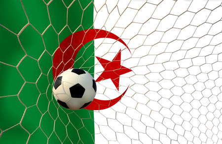 Algeria soccer ball photo