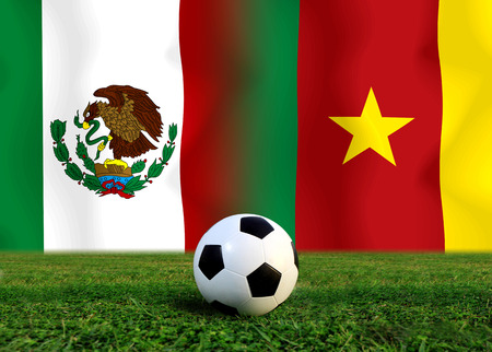Soccer World Cup 2014   Football    Mexico and  Cameroon photo