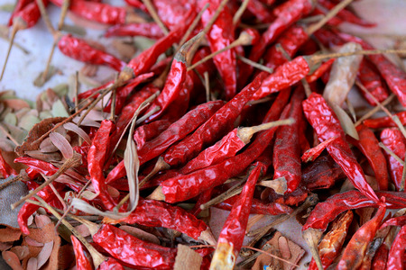 condiment: Dried chili a spicy condiment