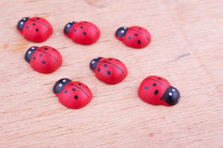 irregularity: ladybugs