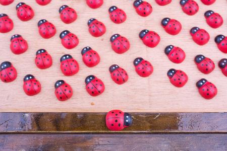 irregularity: ladybugs on board