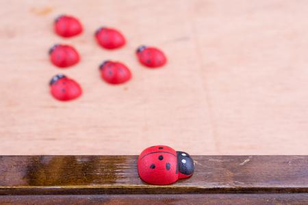 irregularity: Opposition with wooden ladybird Stock Photo