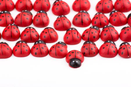 irregularity: Opposition with wooden ladybug Stock Photo