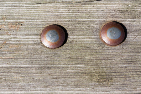 rusty: rusty screws