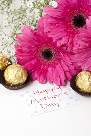 mothers day: Gerbera daisies and mothers day card on white background Stock Photo