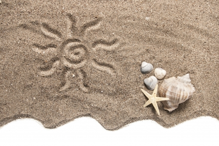 Beach concept with seashells, conch shell and starfish on the sand Stock Photo - 13635890