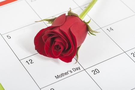 rose bud: Bocciolo di rosa rossa sul calendario che mostra le madri giorno Archivio Fotografico
