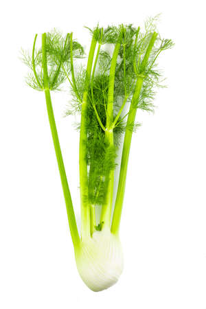 Fresh, organic celery with stalk on white background Stock Photo