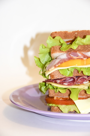 Huge high biggest sandwich with pork beef cheese salad tomato and vegetables burger on a violet plate white  background