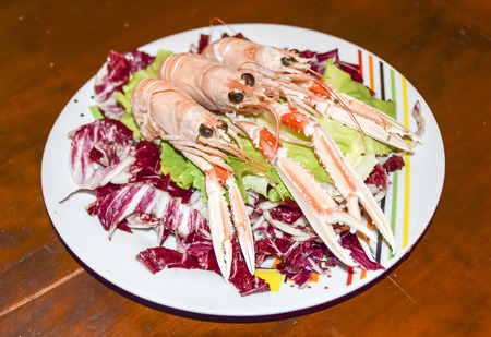 Leaves of green and red salad with langoustine shrimps on a plate on wooden background
