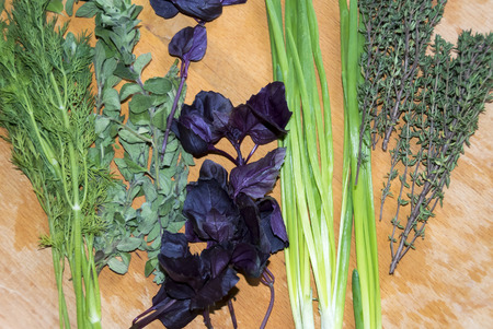 rozmanrin dill thyme oregano basil green onion on a wooden background