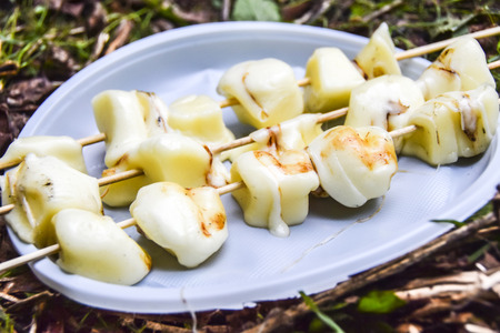 BBQ on the nature in summer Suluguni cheese grilled on skewers lying on the ground on a white plate