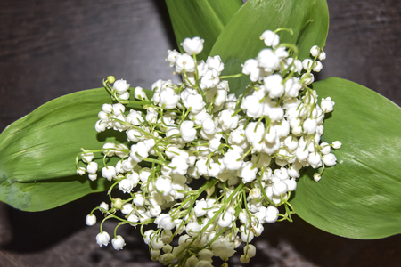 bouquet of flowers white lilies of the valley  green leaves
