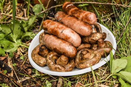 barbecue on the nature in summer mushrooms meat sausages kebab grill lies on a plate on  grass