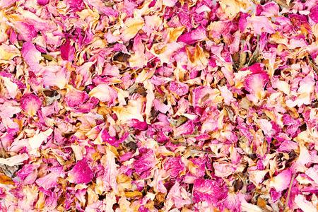 Dried rose petals close-up background. Stock fotó
