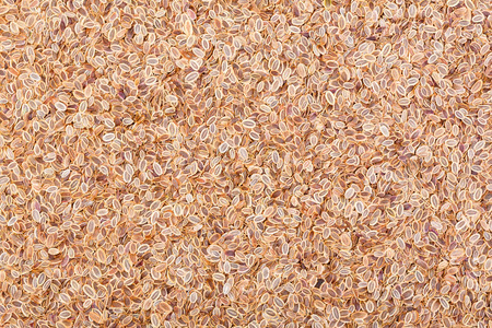 Dill seeds. Stock fotó