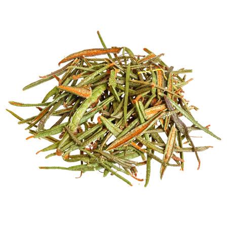 palustre: Marsh (Northern) Labrador Tea (Ledum palustre) isolated on white.
