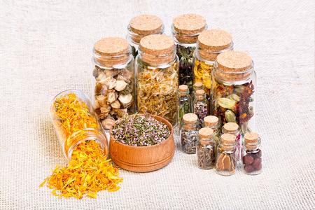 Pflanzliche Naturheil Auswahl Auch In Der Heidnischen Hexen ...