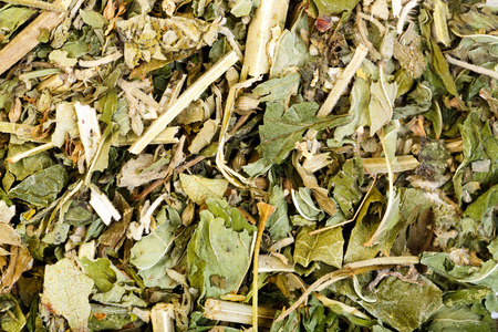 felines: Dried catnip or cat mint can be used as a herbal tea or playful response in felines. Stock Photo