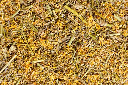fabaceae: Texture of Melilot, Meliloti herba. Stock Photo