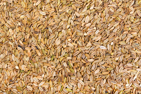 fennel seeds: Dried fennel seeds background. Stock Photo