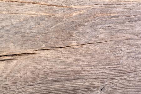 bog: Bog oak texture. Wood.