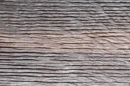 bog: Petrified wood (bog oak) texture. Stock Photo
