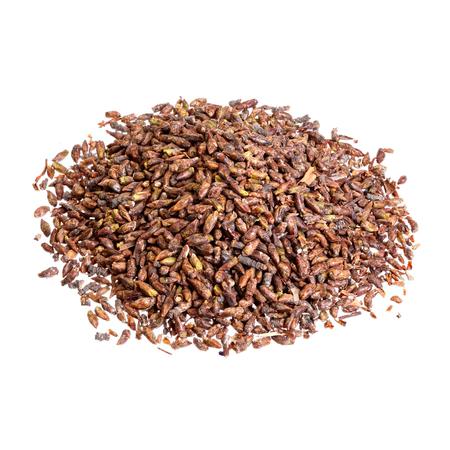 antispasmodic: Dried birch buds isolated on white.