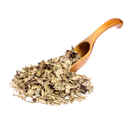 plantain herb: Dry crumbled plantain Plantago lanceolata on wooden spoon. Medicinal herb isolated on white.