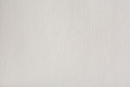primer: Canvas texture coated by white primer.
