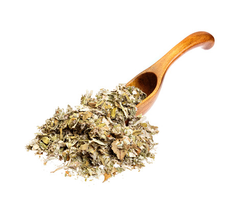 botanical remedy: Dried foliage of coltsfoot on the wooden spoon (Tussilago farfara) for medical use. Stock Photo